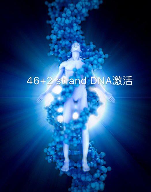 激活46+2-strand DNA工作坊