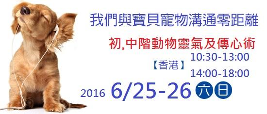 動物靈氣及傳心術工作坊 Animal Reiki &Communication