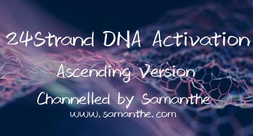 24DNA全新星級版激活及閱讀服務