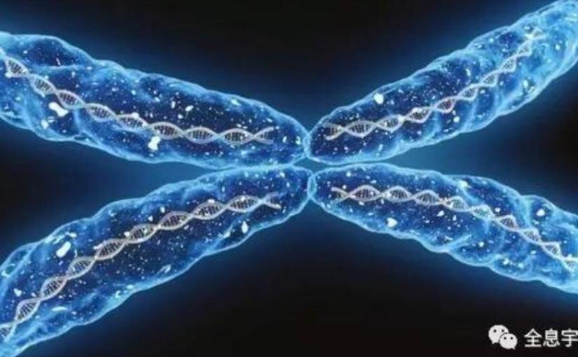 科學家證實古老奧秘聲音能重編Dna